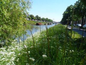 Gent 27.05.2013 104