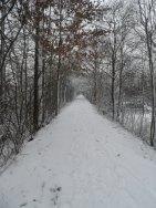 gent sneeuw 15.01-2013 044
