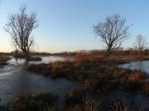gentbourgoyen11-12-2012 016