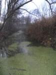 gentbourgoyen10122012-025