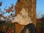 gentbourgoyen11-12-2012-011